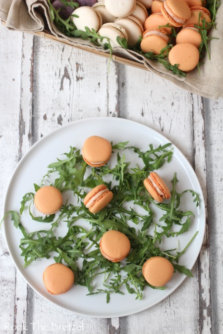 Macarons saumon pomme12
